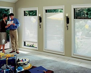 Kenner Shutters & Blinds